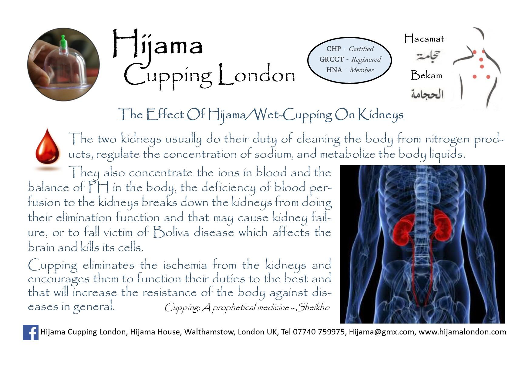 Hijama effects on Kidneys